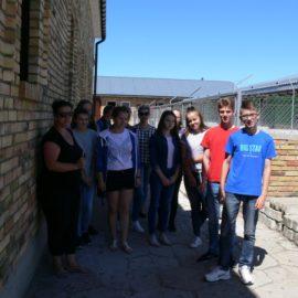 Działania promocyjne podejmowane przez Schronisko Green House zwiększające adopcję zwierząt  (Czerwiec , Lipiec, Sierpień 2018 r.)
